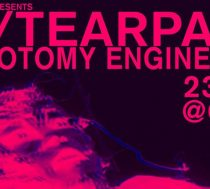 Tearpalm MRT Dichotomy Engine